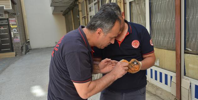 Kahramanmaraş'ta iş yerinin kepengine sıkışan ebabili itfaiye kurtardı
