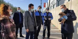 Kahramanmaraş'ta Sokak hayvanları unutulmadı