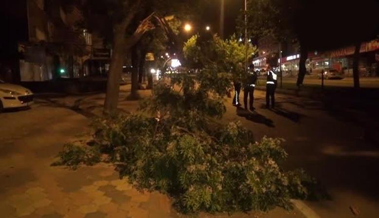 Kahramanmaraş'ta fırtına etkili oldu