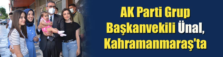 AK Parti Grup Başkanvekili Ünal, memleketi Kahramanmaraş'ta