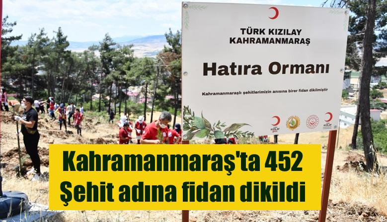 Kahramanmaraş'ta 452 Şehit adına fidan dikildi