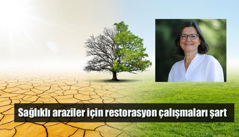 Sağlıklı araziler için restorasyon çalışmaları şart