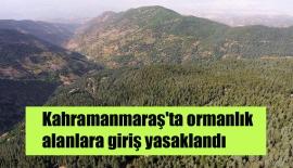 Kahramanmaraş'ta ormanlık alanlara giriş yasaklandı
