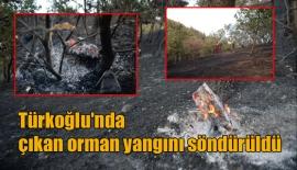 Türkoğlu'nda çıkan orman yangını söndürüldü