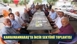 KAHRAMANMARAŞ'TA İNCİR SEKTÖRÜ TOPLANTISI