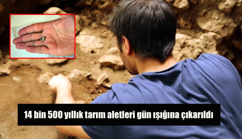 14 bin 500 yıllık tarım aletleri gün ışığına çıkarıldı